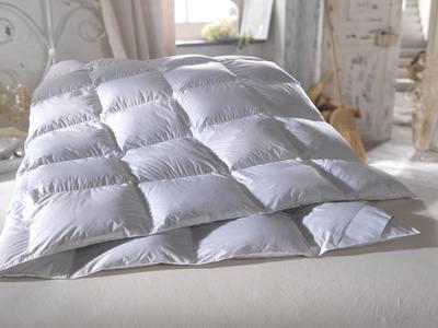 Eiderdaunen Bettdecke